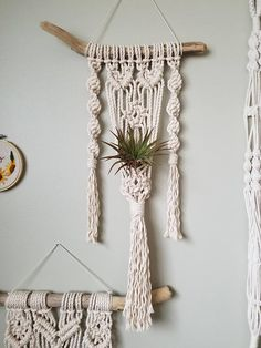 Check out this item in my Etsy shop https://www.etsy.com/ca/listing/563528076/macrame-plant-hanger-for-air-plant-x