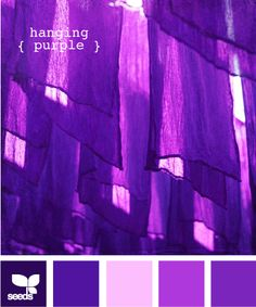hanging purple Purple Love, Purple Rain, Shades Of Purple, Pink Purple, Purple Colors, Purple Meaning, Colour Pallette, Purple Palette, Color Profile