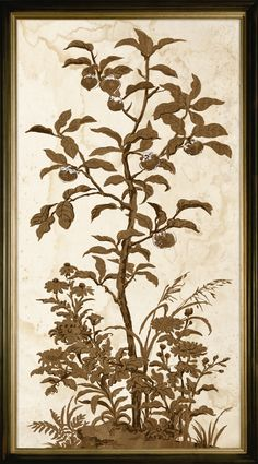 Tree of Life 3, Silverleaf   Natural Curiosities
