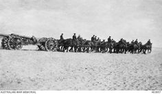 A 60 pounder British Army gun used by the Australian Army being hauled across the desert by a team of twenty four horses. The special wheels are designed to give traction in the sand.Egypt: Frontier, Sinai, El Arish Area, El Arish c 1917