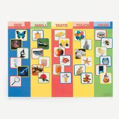 Buena idea para el tema de los cinco sentidos. Five Fun Senses Make-A-Sticker Scenes - OrientalTrading.com