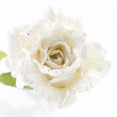 Long stemmed paper ranunculus white ivory paper flowers australia large long stemmed paper rose white paper flowers australia mightylinksfo