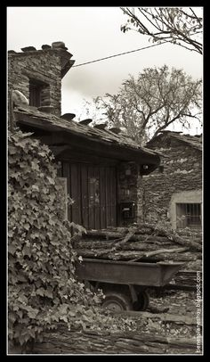 Campillo de Ranas (Arquitectura Negra)