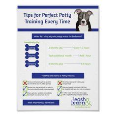 Puppy Shot Schedule, New Puppy Checklist, Puppy Potty Training Tips, Crate Training Puppies, Puppy Crate Training Schedule, Dog Training, House Breaking A Puppy, Puppy Socialization, Puppy Classes