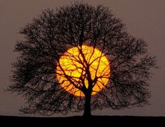 http://www.letssmiletoday.com/pictures/8685-cool-sunset