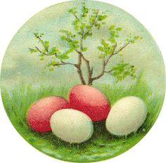 free-vintage-easter-eggs-clip-art.png (304×300)