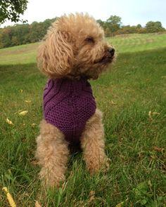 Hand-knit Ribbed Turtleneck Dog Sweater size S