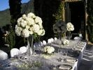 - Creazioni floreali per ogni occasione - Flower composition and creations for all events - Centrotavola - Restaurant decorations
