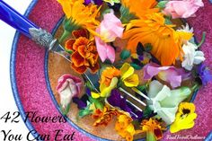 Flower Power: 42 Flowers You Can Eat