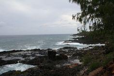 Kauai  I spotted a whale here.