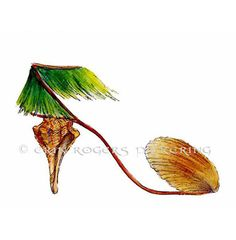 Shoe Art Hawaiian Shell Grass Skirt 5x7 Print by eringopaint, $17.00