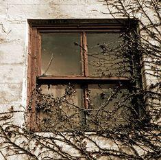 4 Ways To Stop Winter Window Heat Loss