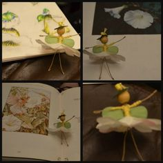 Beautiful sciencey craft inspired by the Flower Fairies.