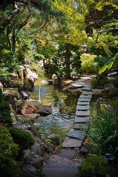 7 Miraculous Tips: Large Backyard Garden Front Porches backyard garden design tropical.Backyard Garden Design How To Grow. Garden Pond, Garden Theme, Garden Paths, Garden Landscaping, Gravel Garden, Big Garden, Spring Garden, Garden Planters, Small Japanese Garden