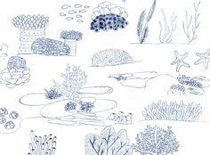 Wedgie's sketch blog : Photo