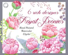Royal Peonies  watercolor clipart peonies commercial by AqwaColor