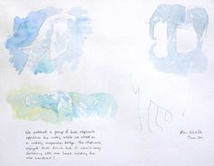 Elephant Field Sketches by Wildlife & Conservation Artist Alison Nicholls