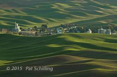 A view from Steptoe Butte. © 2015 Pat Schilling