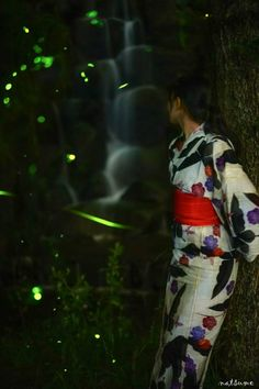 Fireflies in Nagano, Japan | Akinori Koseki  I don't see fireflies anymore. Are they still common in Japan?
