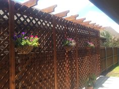 Landscaping Company, Arbors, Outdoor Structures, Landscape, Wall, Courtyards, Pergolas, Landscaping, Pergola