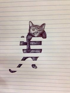 Cat and notebook art.