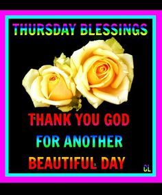Thursday blessings. Thank you God for another beautiful day.