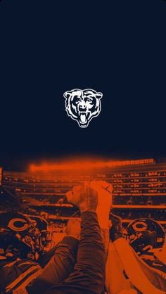 Chicago Bears Wallpaper, Chicago Bears Pictures, Nfl, Hockey, Football, Search, Twitter, Sports, Inspiration