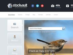 A Full Review of Stockvault.net, a Website for Free Stock Photos