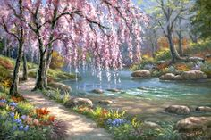 Cherry Blossom Trees by Sung Kim