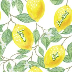 Would you like new uses for your Lemon essential oil? 🍋 You can use Lemon essential oil to remove persistent residue off surfaces! 😲 Just put a drops of Lemon essential oil on a cloth and use! Forever Bright Toothgel, Jojoba Shampoo, Clean Wood, Forever Business, Forever Aloe, Forever Living Products, Tomorrow Will Be Better, Lemon Essential Oils, Sore Throat