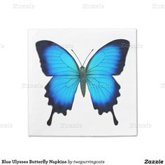 Blue Ulysses Butterfly Napkins Standard Cocktail Napkin