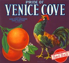vegetable Crate Labels | Pride_Of_Venice_Cove