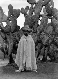 """cazadordementes:   """"Niño en la nopalera"""" (1929) foto de Tina Modotti."""