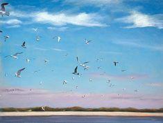 Shorebirds, Air Show, Birds In Flight, Islands, Coastal, Freedom, Wildlife, Sky, Posts