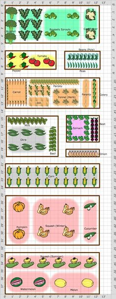 This is the layout I plan to use on the side of my house. It is a very sunny location and we have had success growing veggies in this area.