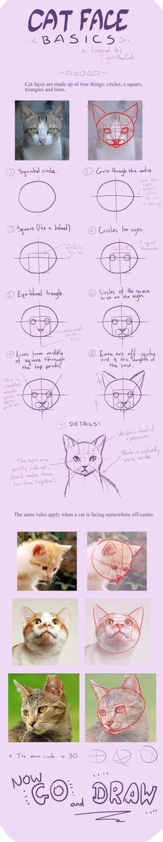 first time I'm think to post this on Step by step album in my FB but look like this can be tutorial.. but it have nothing much just how I'm draw cat hope you enjoy