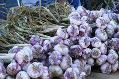 #aglio #francia #mercato #luberon