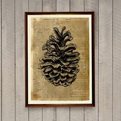 Pine cone print for home and office decoration. Botanic poster on a handmade antique dictionary page. 8.3 x 11.7 inches (A4) pine cone decor.