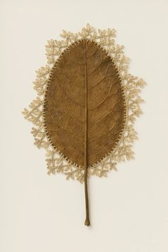 The German-born artist Susanna Bauer transforms fronds and branches and into intricate scupltures Freehand Machine Embroidery, Embroidery Leaf, Embroidery Designs, Crochet Leaves, Crochet Flowers, Dragonfly Garden Decor, Crochet Flower Tutorial, Flower Doodles, Painted Leaves