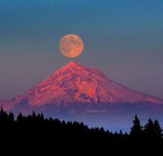 I didn't take this picture but I saw this you several times last week its so so pink. Mount Hood Oregon