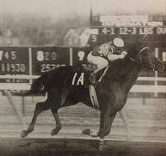 Turn And Count(1973)Best Turn- Countess Alberta By Count Fleet. 4x5x5 To Pharos, 5x5 To Plucky Liege. 19 Starts 9 Wins 7 Seconds. $246,971. Won Roamer H(G2), Excelsior H(G2), Grey Lag H(G2). Died In 1980.