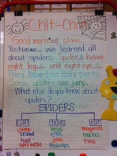 One of our chit-chat messages. We made a spider tree map and then wrote sentences.