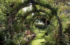 Traditional Garden by Waldo's Designs in Bel Air, California