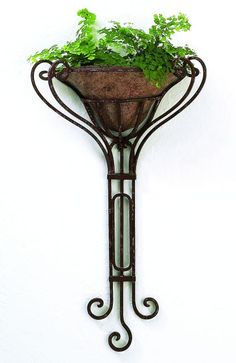 Tuscan Wrought Iron Metal Wall Planter with Removable Liner. Great way to bring a touch of green to your space.