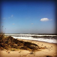 Chillin in the dunes just after Hurricane Sandy. Fort Pierce Inlet State Park: Fort Pierce, FL