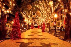 Um Feliz Natal repleto de harmonia.  Celebrar o Natal é... crer na força do amor é isto que transforma o homem e o mundo.  Que a mensagem de fé e esperança do Natal renove nossas forças para continuarmos lutando no Ano Novo que se anuncia.