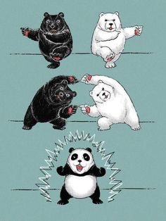 First Panda! If you don't get this then you better educate yourself quick in some Dragonball Z!!!