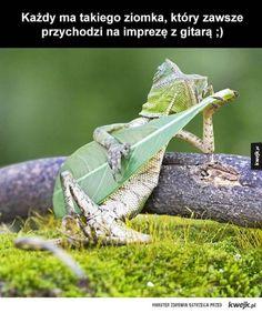 Ziomek z gitarą