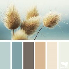 today's inspiration image for { nature hues } is by @cherfoldflowers ... thank you, Caroline, for another inspiring #SeedsColor image share!