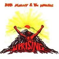 bmw-uprising.jpg